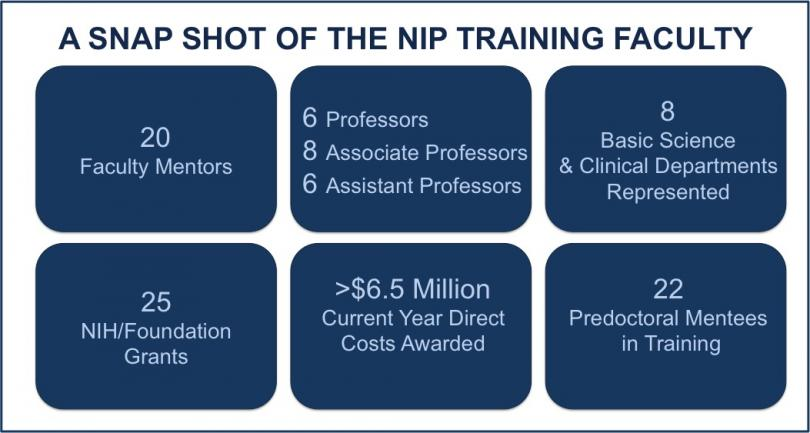 A snapshot of the NIP Training Faculty