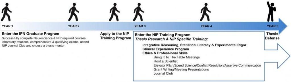 5 Year Steps to the NIP Training Program