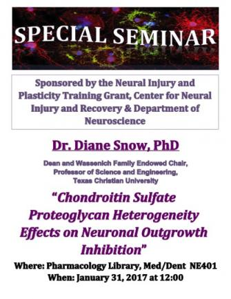 Special Seminar with Diane Snow, PhD